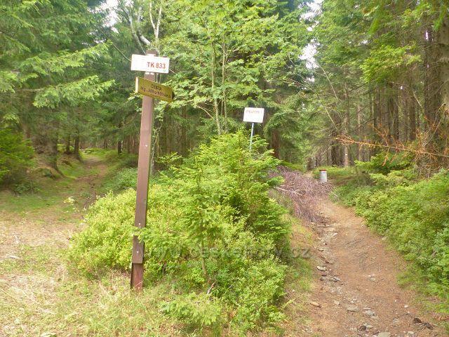 Horní Maršov -cesta ing. Jiřího Nováka vede po zelené TZ přes vrchol Lysečinské hory až na Pomezní boudy a stále kopíruje státní hranici s Polskem. Na jejím začátku je bod záchrany TK 833