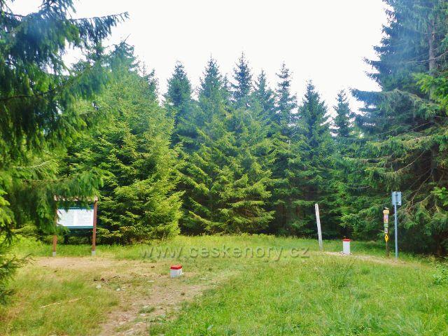 Malá Úpa - rozcestí tras po zelené a žluté TZ na českopolské hranici na úbočí Lysičenské hory