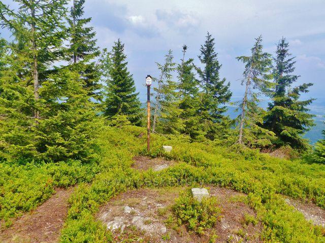 Malá Úpa - vrchol Lysečinské hory 1188 m.n.m.