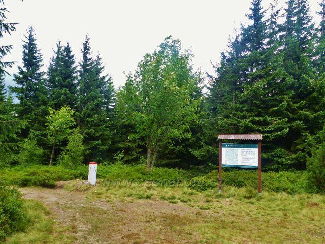Malá Úpa - rozcestí na hraniční cestě po zelené TZ s informační tabulí polské lesní správy