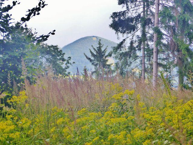 """Žacléř - pohled z """"Výhledů"""" z úbočí Horního lesa na Královecký Špičák"""