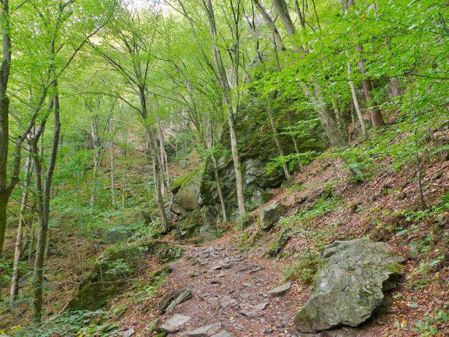 Semily - Riegrova stezka ve skalnatém svahu nad Jizerou v PR Údolí Jizery