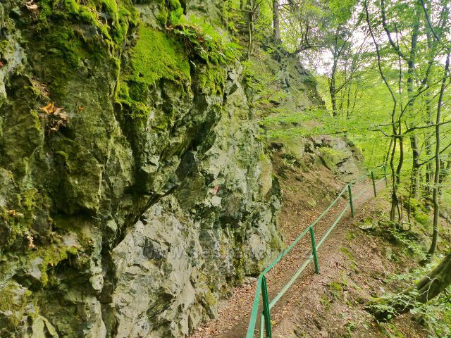 Semily - Riegrova stezka mezi Bohmovo vyhlídkou a přístřeškem Pěšorest v PR Údolí Jizery