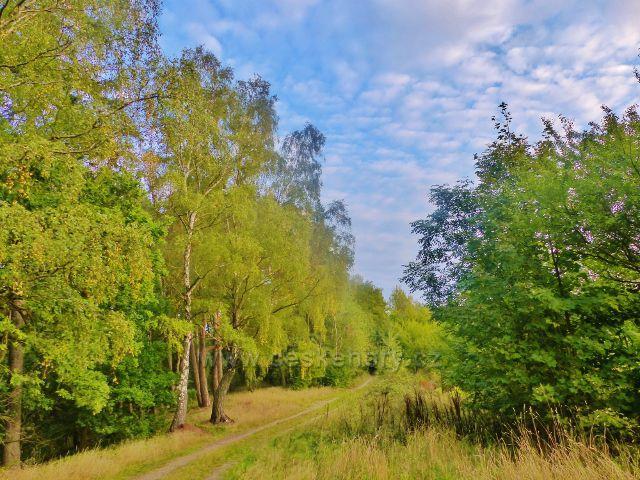 Cesta po žluté TZ k vysílači nad Líšným