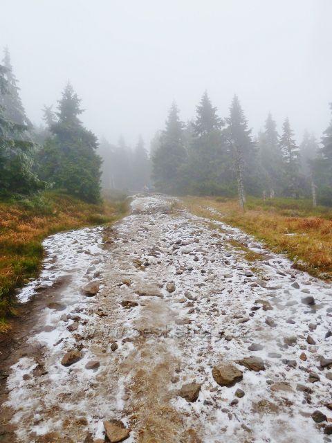 Po zelené TZ na vrchol Králického Sněžníku