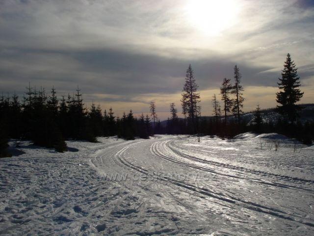 Černá hora, Šumava