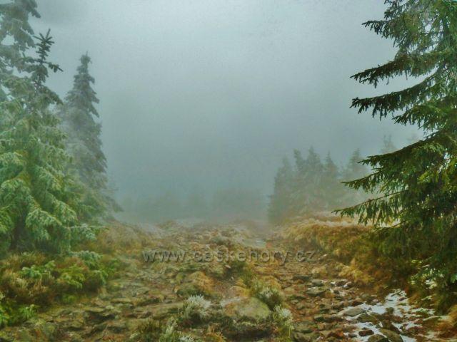 Mlha pod vrcholem Králického Sněžníku