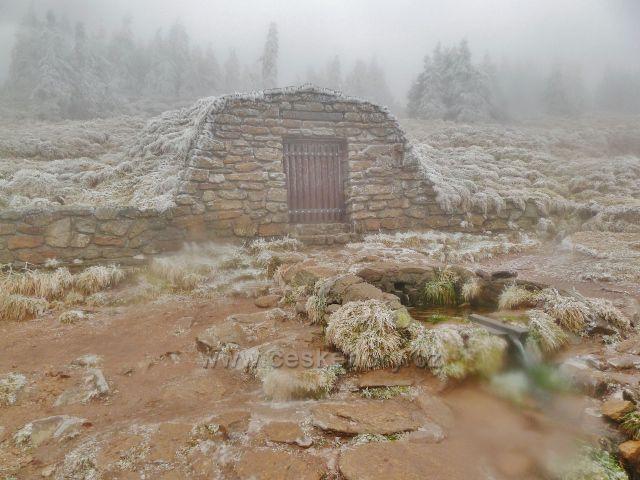 Pramen Moravy pod vrcholem Králického Sněžníku v podzimním hávu