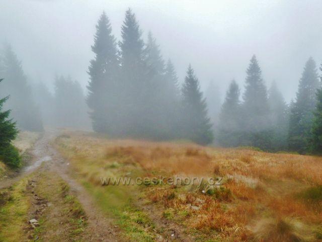 Králický Sněžník - cesta po červené TZ z rozcestí Franciska do Stříbrnického sedla