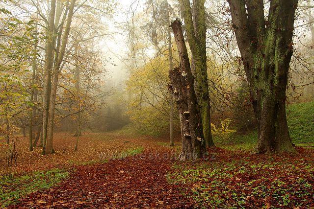 Lázeňský park na Kyselce