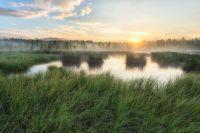 Soumarské rašelinišťe
