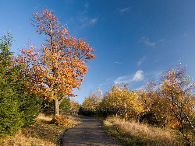 Podzimní cesta na vrchol Jedlové.