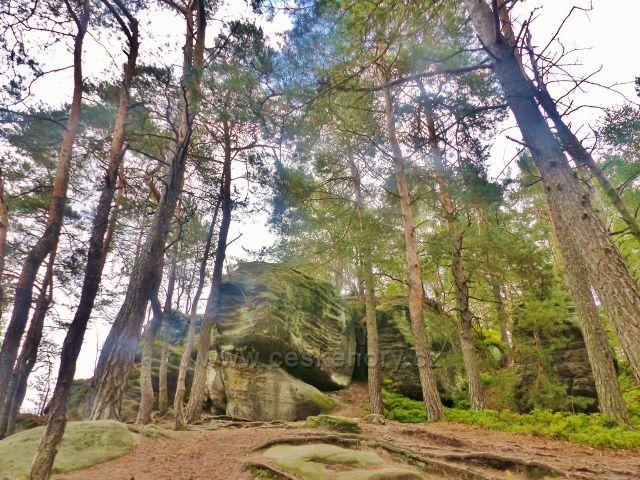 Klokočské skály - zakončení skalní stěny nad okrajem obce Klokočí