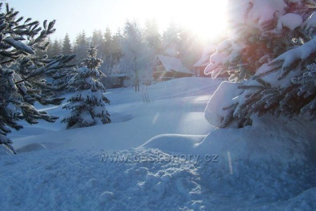 Klíny 29.12.2010