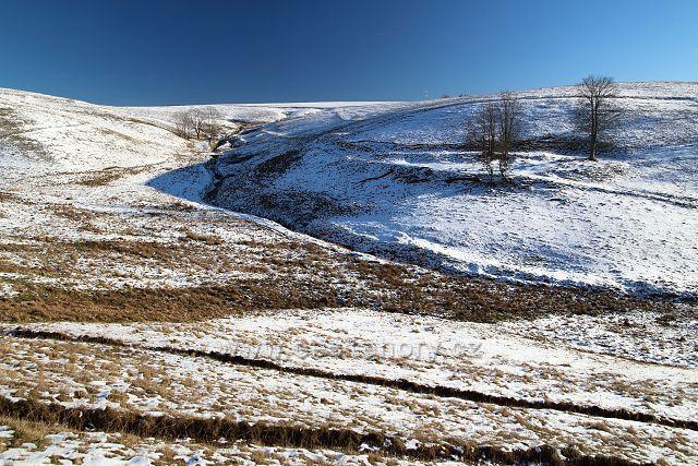 Pastviny na Moldavě