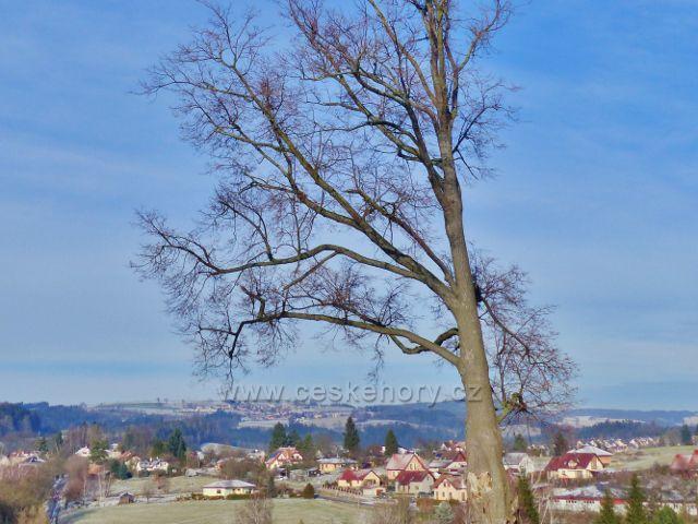 Pohled na Jablonné nad Orlicí z úbočí Cikánského kopce