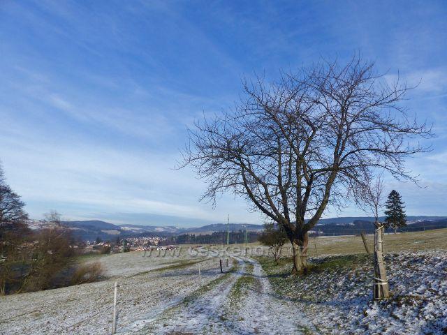 Cesta po modré TZ po úbočí Cikánského kopce do Bystřece