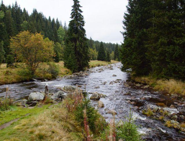 Soutok Roklandského a Modravského potoka