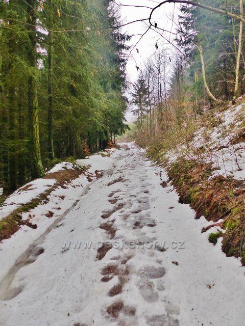 Jestřebí hory - cesta po žluté TZ od Šrajberky k Bílému kůlu