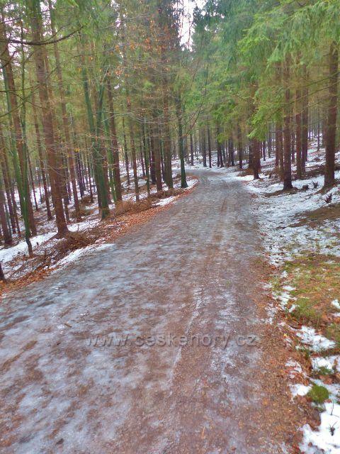 Jestřebí hory - zledovatělá cesta od bílého kůlu k rozcestí pod rozhlednou Žaltman