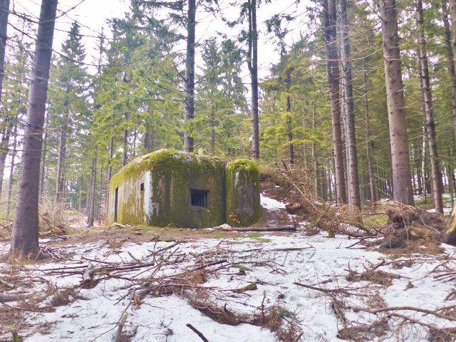 Jestřebí hory - cesta k rozhledně Žaltman prochází pásmem bunkrů