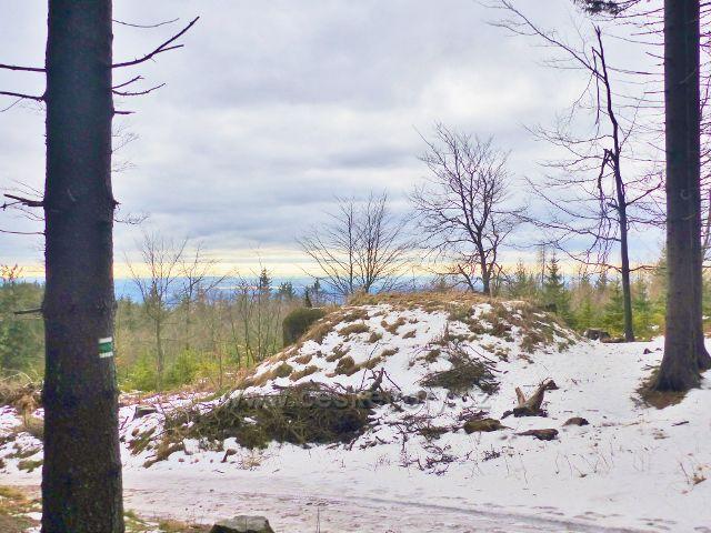 Jestřebí hory - vykácené stromy odhalily strategické umístění Řopíku před rozcestím pod Žalmanem