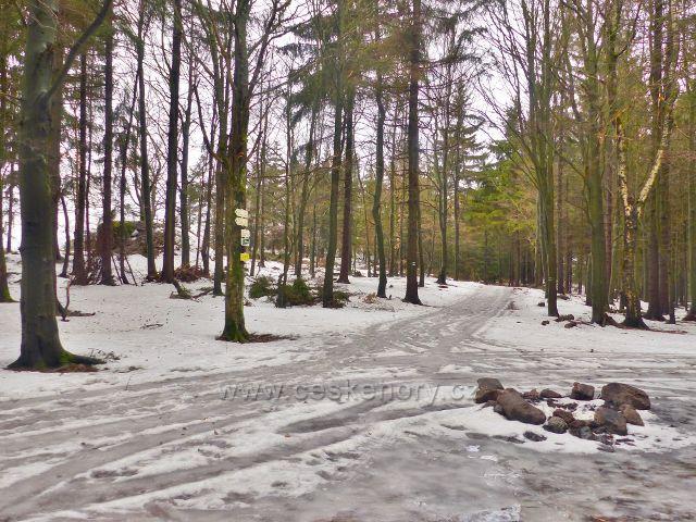Jestřebí hory - rozcestí na zelené TZ pod rozhlednou Žaltman