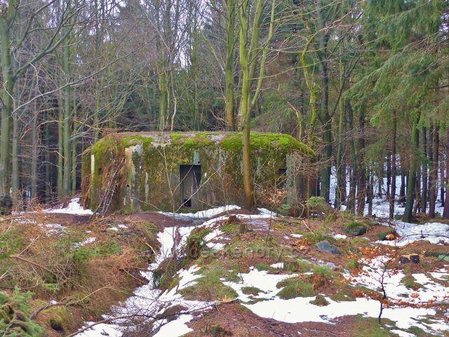 Jestřebí hory - bunkr u rozcestí Pod rozhlednou Žaltman