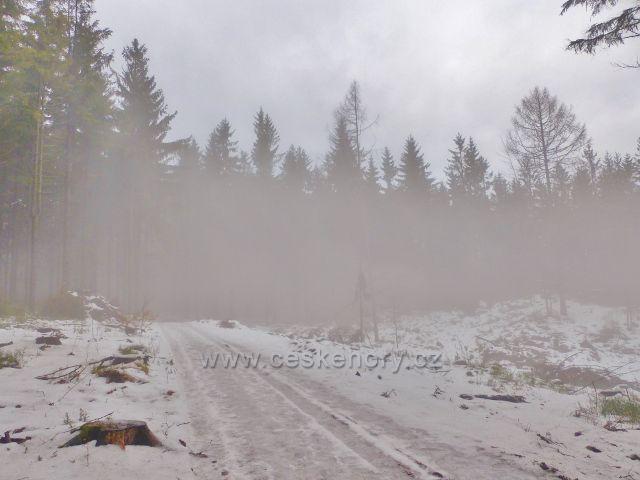 Jestřebí hory - po cestě k Jestřebí Boudě se převaluje mlha