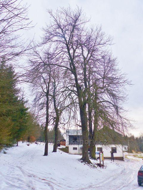 Jestřebí hory - na horním okraji osady Paseka stojí chata KČT Jestřebí bouda