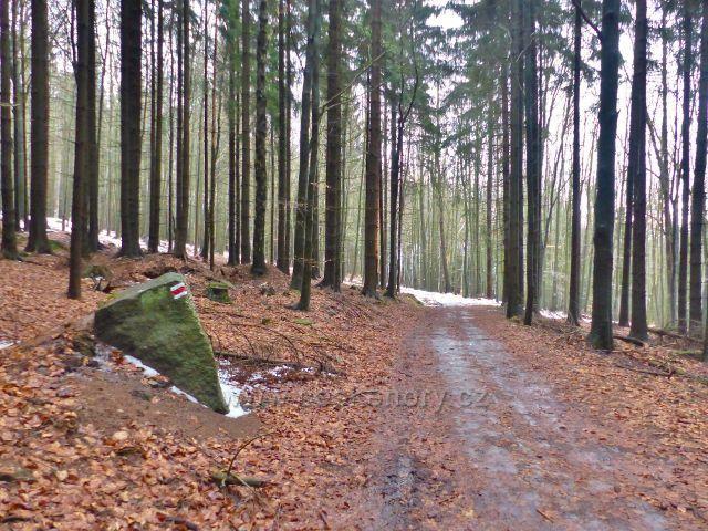 Malé Svatoňovice - cesta bratří Čapků k rozcestí Na Horách