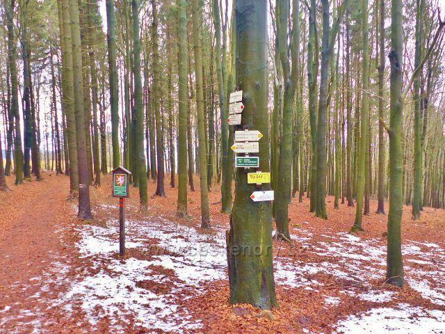 "Malé Svatoňovice - turistický rozcestník ""Na Horách (rozc.)565 m.n.m."""