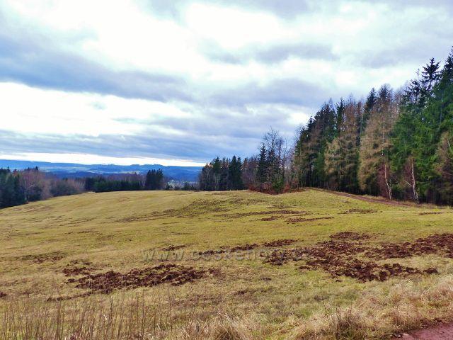 """Malé Svatoňovice - pastviny Na Horách """"přeryté"""" černou zvěří"""