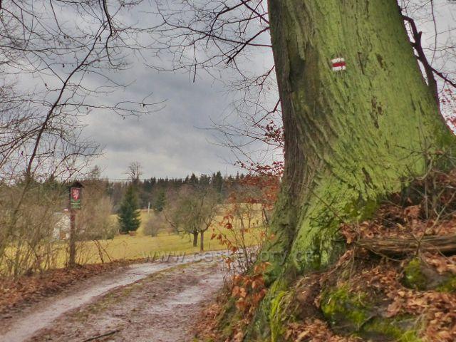 Malé Svatoňovice - cesta bratří Čapků prochází PP Žaltman,která se rozkládá na 55 ha jižního svahu Jestřebích hor