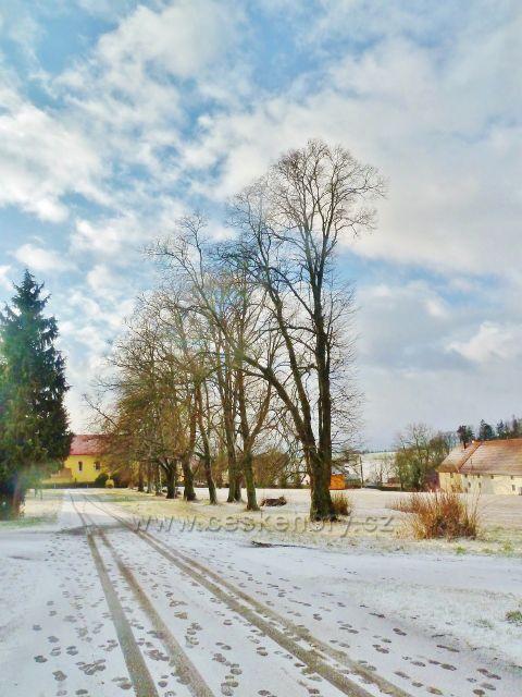 Kunvald - alej mezi kostelem a starou školou