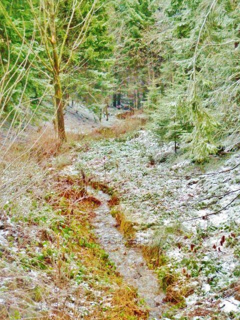 Kunvald - Malý potok nad silničkou na Končiny