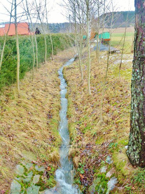 Líšnice - Zákopanka, jeden z přítoků Dolského potoka
