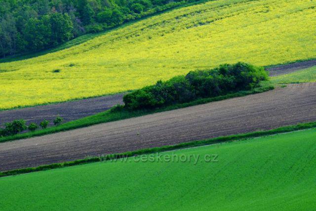 jaro v Moravském Toskánsk