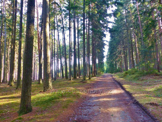 Vrbice - trasa po červené TZ a cyklostezka od Vrbické studánky  do Potštejna