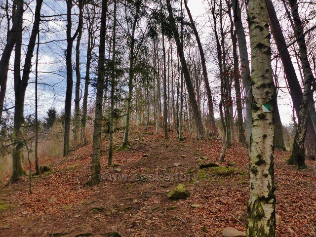 Potštejn - hřebenová stezka po zelené značce NS Velešov ke zřícenině
