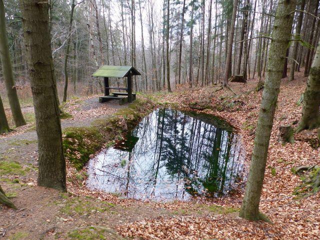 Potštejn - Přístřešek s jezírkem nad cestou po červené TZ k hradu Velešov