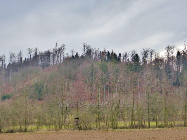 Potštejn - pohled ze silnice  ke zřícenině hradu Velešov