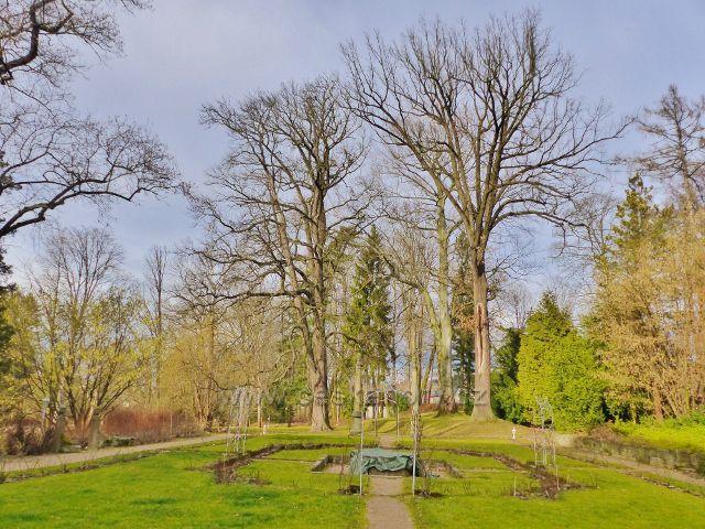 Potštejn - zámecká zahrada