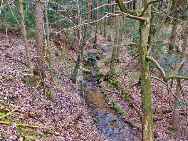 Velká Lhota - Prorubský potok