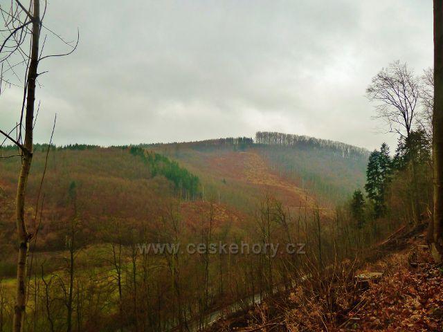 """Vadětín -pohled k vrcholu """"bukové stráně""""(486 m.n.m.) nad Černovírem"""
