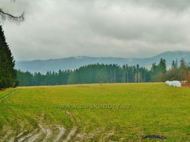 Vadětín - luční enkláva. Na obzuru se rýsuje Kubincův kopec(487 m.n.m.) nad Ústím nad Orlicí