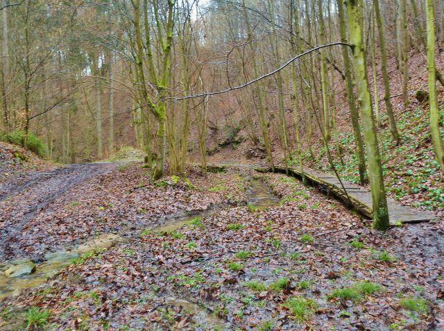 Vadětín - dřevěný chodník nahrazuje místy potokem rozbahněnou cestu po trase NS Údolím Sejfů
