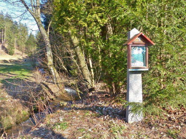 Přírodní památka Čenkovička - začátek údolí potoka Bystřec ,který tvoří hlavní osu celé přírodní památky s jedinečným výskytem bledulí
