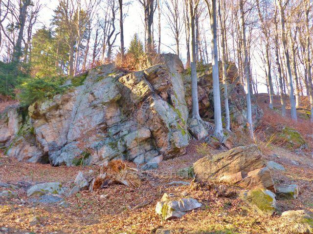 PP Čenkovička - skalní výchoz v horní části údolí potoka Bystřec