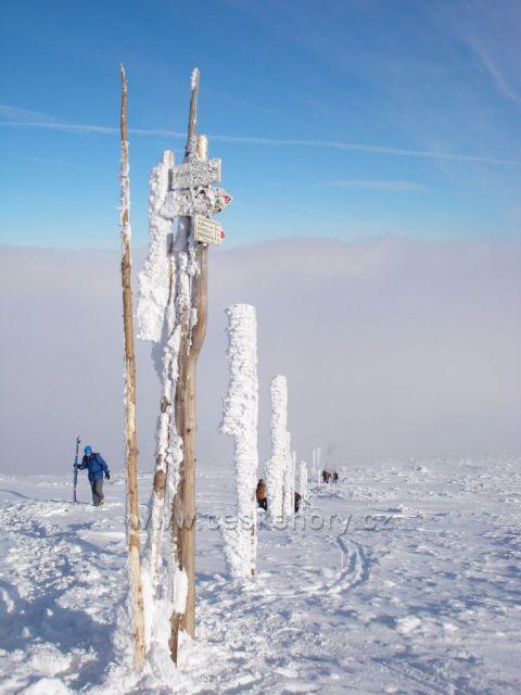 pod Sněžkou, Krkonoše